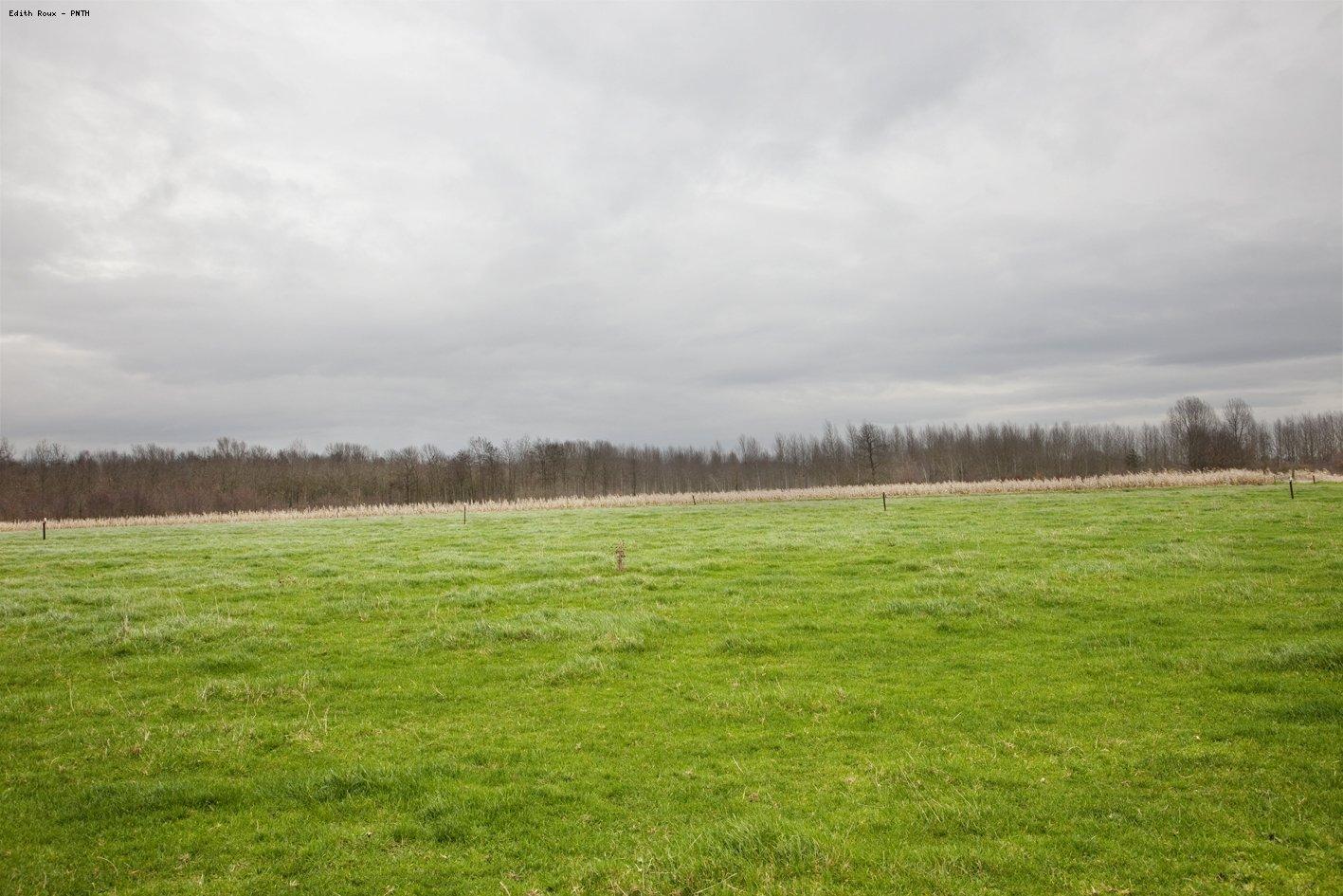 Observatoire photographique transfrontalier des paysages for Paysage definition
